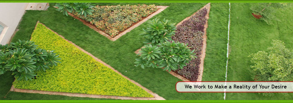 Green Lawn Services - Landscape Developing